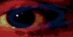 Lo Schiaccianoci: l'occhio